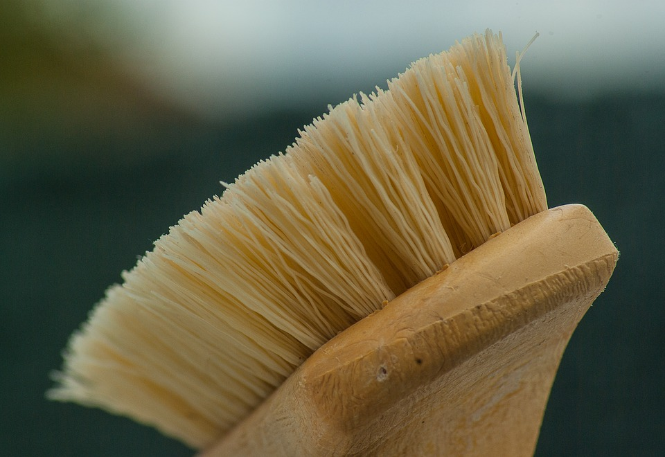brush-1324466_960_720